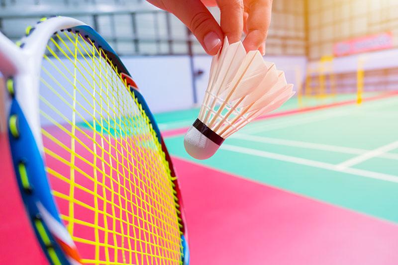DU Activité physique et sportive Badminton